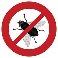 sign_interdiction_for_flies_58.jpg